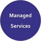 Zinochrome_Managed Services